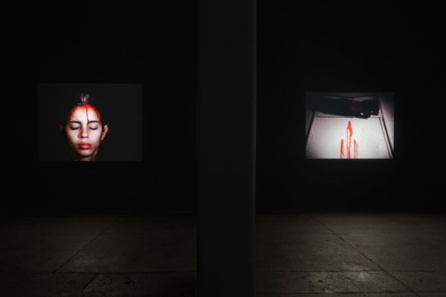 ana-mendieta-installation-3